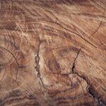 Pinotex træbeskyttelse: Find den rigtige farve